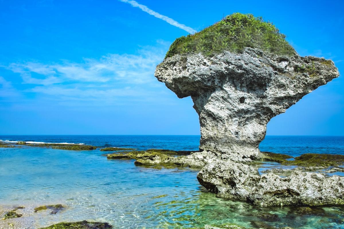 「花瓶岩」